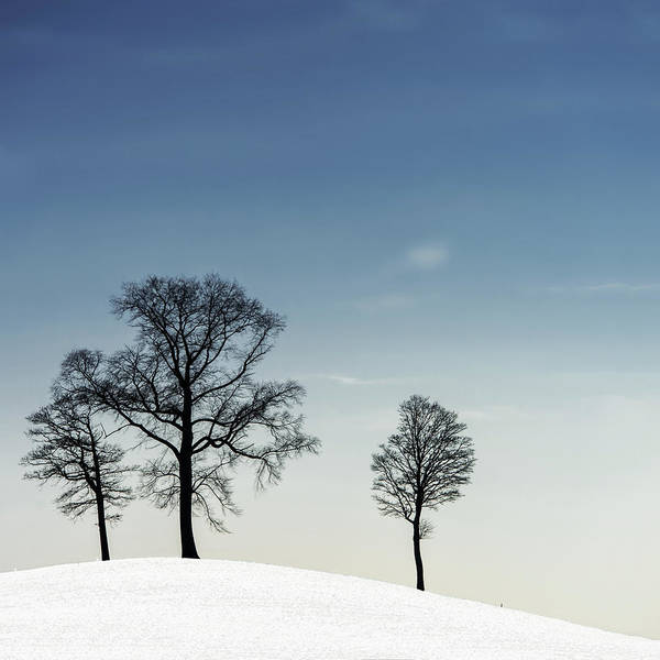 Minimalistic Photograph - Winter Haiku by Piet Flour