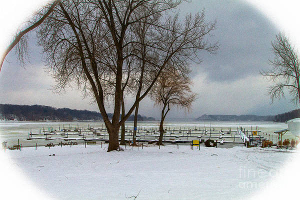 Photograph - Winter Has Arrived by William Norton