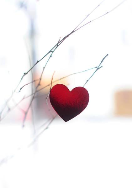 Photograph - Winter Heart by Jenny Rainbow