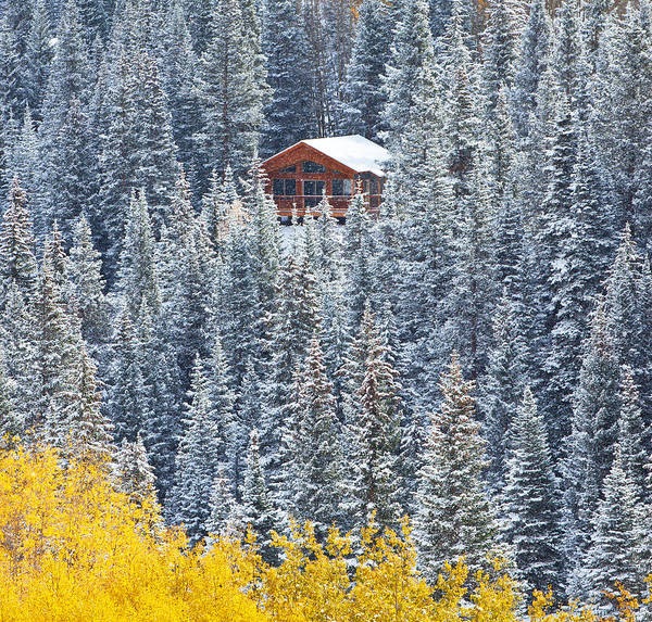 Cabins Photograph - Winter Hideaway by Darren  White