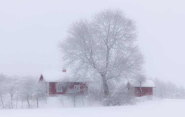 Cabins Photograph - Winter Idyll by Allan Wallberg