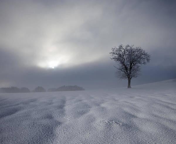 Alps Wall Art - Photograph - Winter Impression by Franz Schumacher