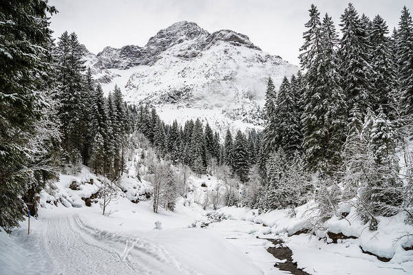 Photograph - Winter In Baergunt Valley Kleinwalsertal Austria by Matthias Hauser