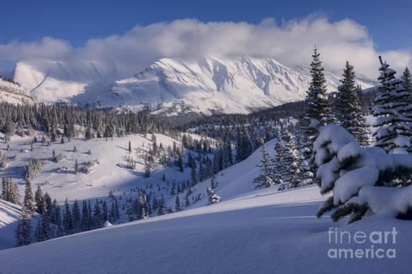 Photograph - Winter In Banff by Dan Jurak
