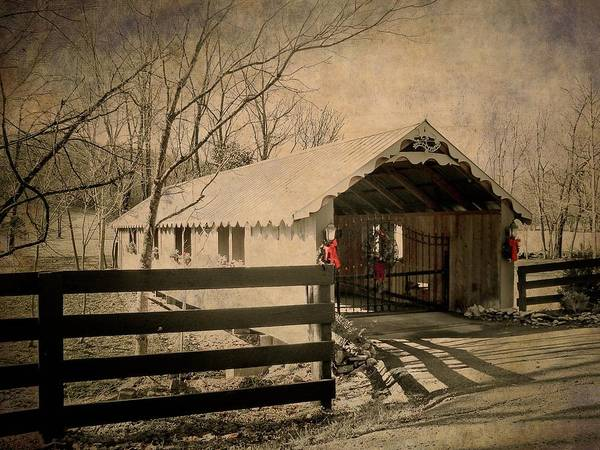 Photograph - Winter In Fairview Tennessee by Trish Tritz
