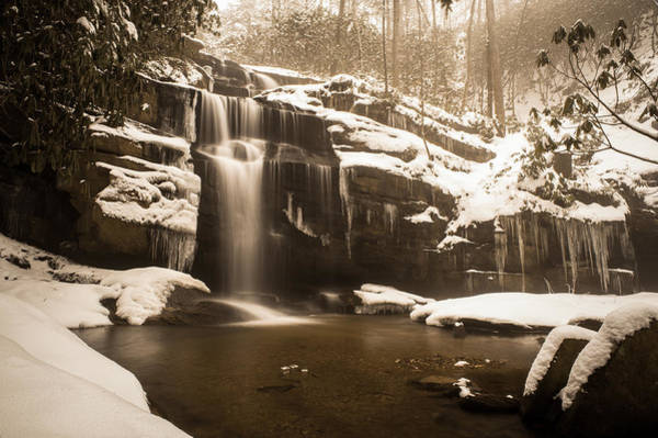 Photograph - Winter In Sepia by Joye Ardyn Durham