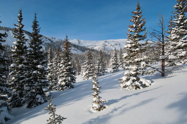 Photograph - Winter In The Mountains by Cascade Colors