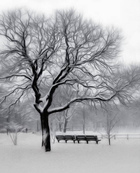 Park Bench Digital Art - Winter In The Park by Nina Bradica