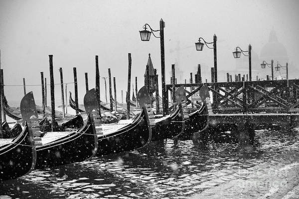 Winter Photograph - Winter In Venice by Yuri San