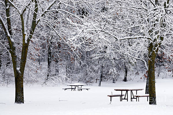 Photograph - Winter Is No Picnic by Larry Ricker