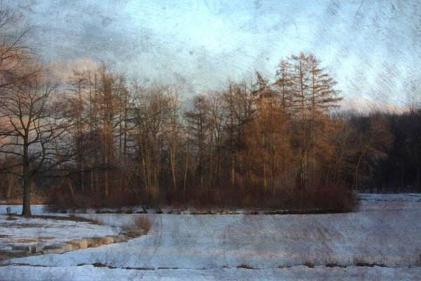 Lagoon Digital Art - Winter Lagoon W Metal by Anita Burgermeister