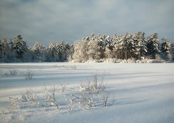 Photograph - Winter Landscape At Mud Lake Ottawa by Rob Huntley