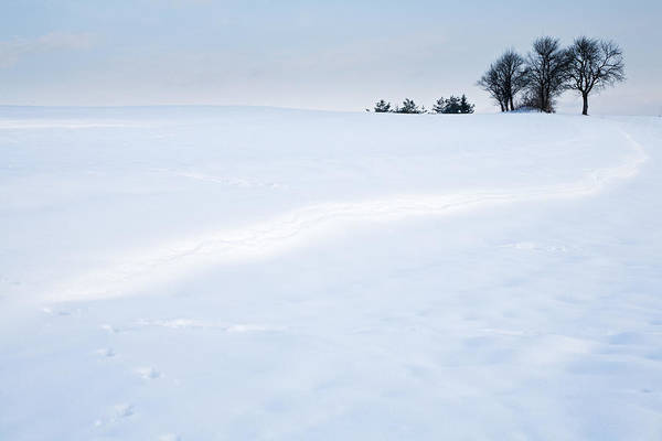 Jance Photograph - Winter Landscapes by Ian Middleton