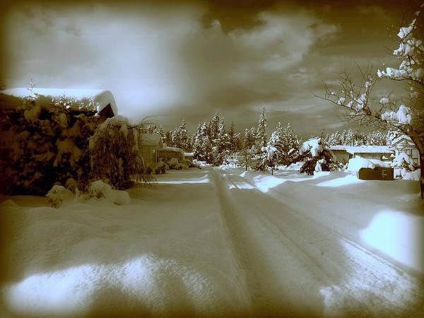 Photograph - Winter Lane by Micki Findlay