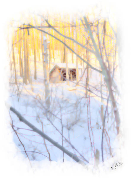 Wall Art - Photograph - Winter Lean-to by Keith Hutchings