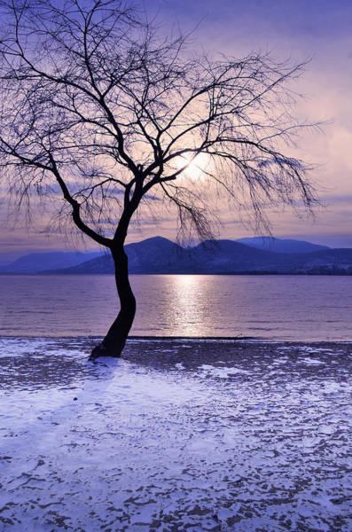 Photograph - Winter Light At Manitou Beach by Tara Turner