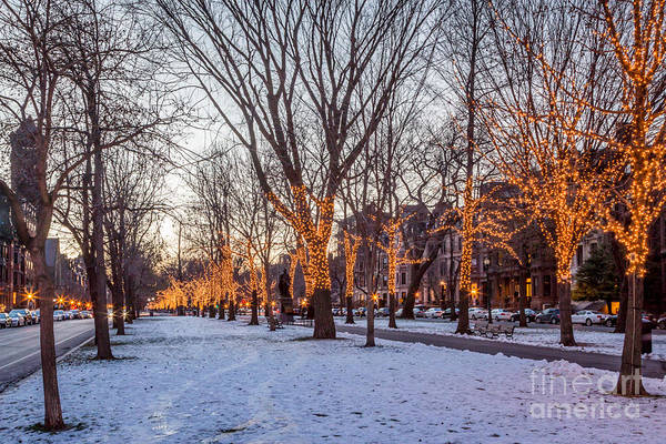 Photograph - Winter Lights On Commonwealth Avenue by Susan Cole Kelly