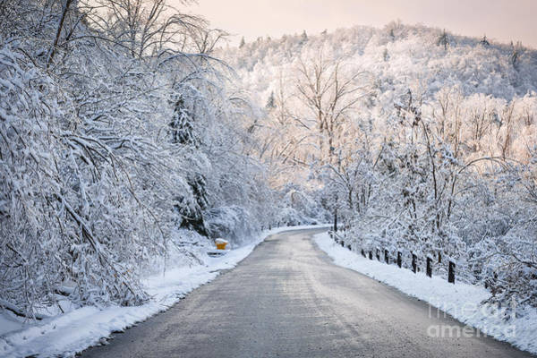 Wall Art - Photograph - Winter Magic by Elena Elisseeva