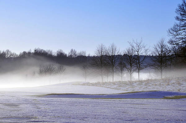 Photograph - Winter Mist by Randi Grace Nilsberg
