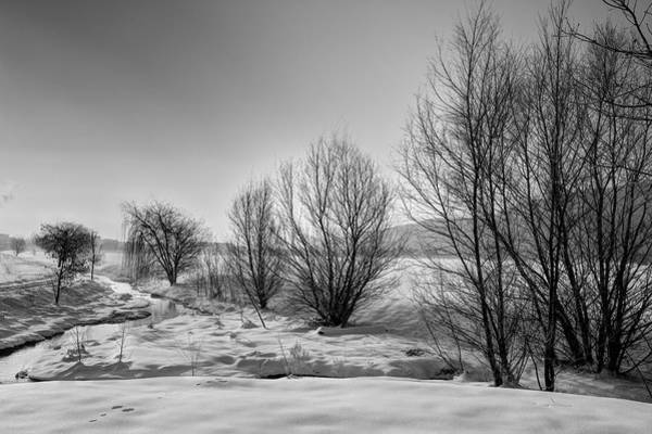 Photograph - Winter Morning by Ivan Slosar