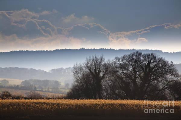 English Countryside Photograph - Winter Morning by Jan Bickerton