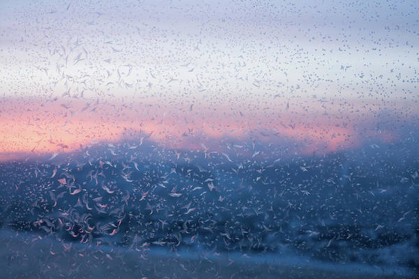 Frosted Glass Photograph - Winter Morning by Luvo