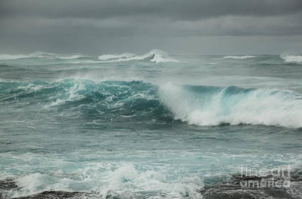 Photograph - Winter North Shore Wave by Charmian Vistaunet