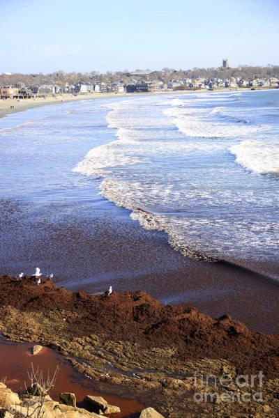 Photograph - Winter Ocean In Newport Ri by Michael Mooney