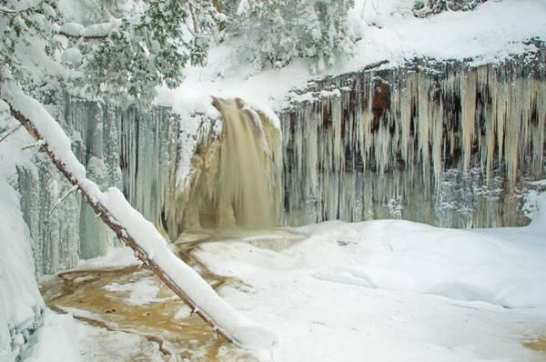 Winter On Carpenter Creek Art Print