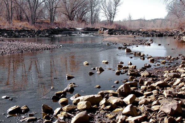 Photograph - Winter On The South Platte River - Denver Colorado by David Patterson