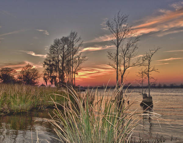 Photograph - Winter On The Waccamaw River by Mike Covington