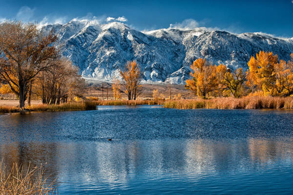 Sierra Nevada Photograph - Winter Or Fall by Cat Connor