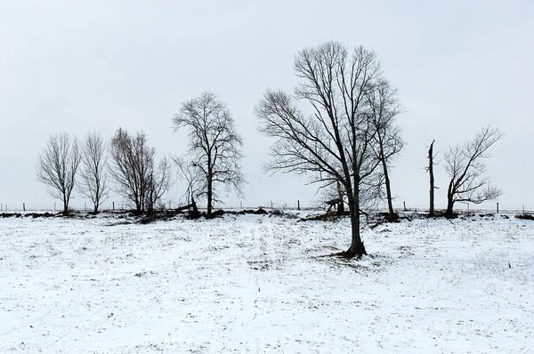 Wall Art - Photograph - Winter Pasture by John W. Bova