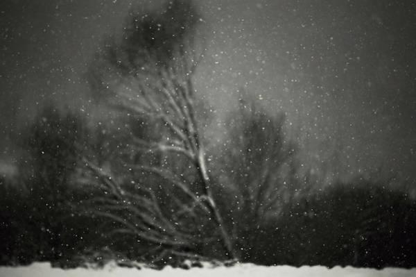 Romania Wall Art - Photograph - Winter by Photocosma