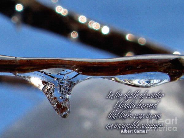 Mixed Media - Winter Quotes by Daliana Pacuraru