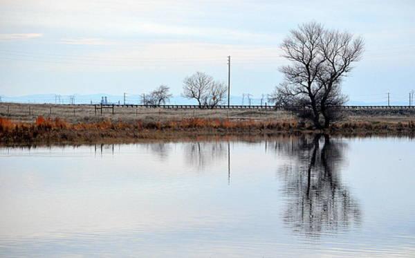 Photograph - Winter Reflection by AJ  Schibig