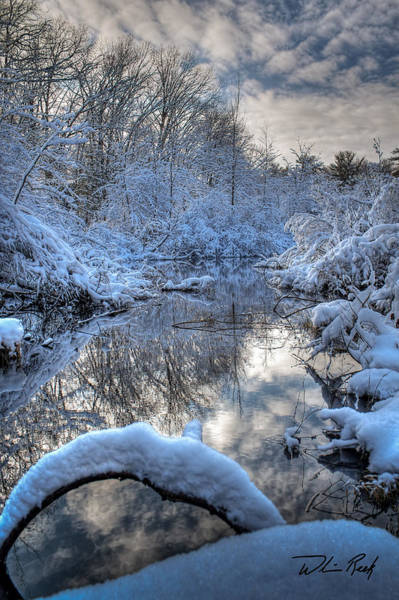 Photograph - Winter Reflections by William Reek