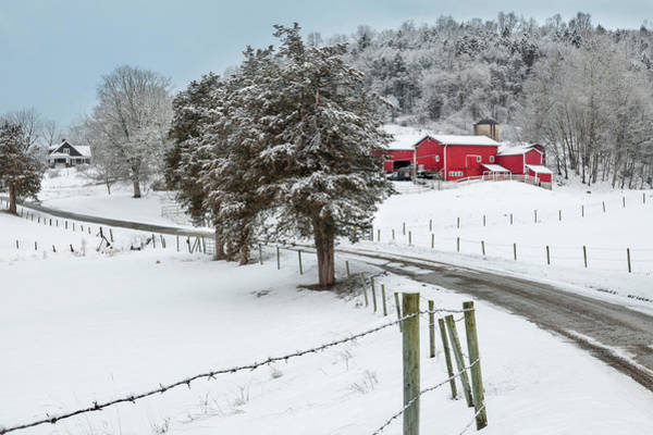 Photograph - Winter Road by Bill Wakeley