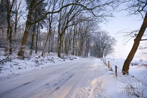 Photograph - Winter Road by David Lichtneker