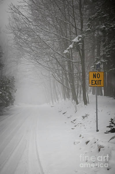 Photograph - Winter Road During Snowfall I by Elena Elisseeva