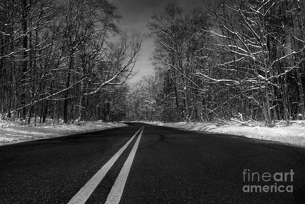 Wall Art - Photograph - Winter Road by Mark Miller