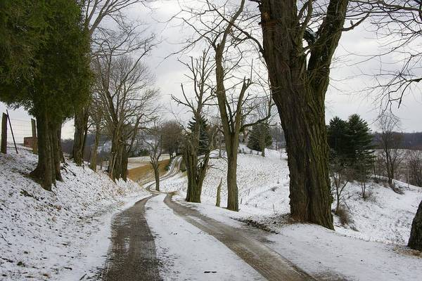 Photograph - Winter Road by Mike Murdock