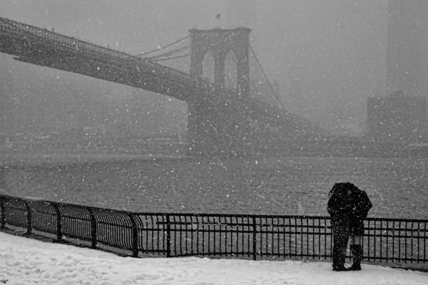 Photograph - Winter Romance by Chris Lord