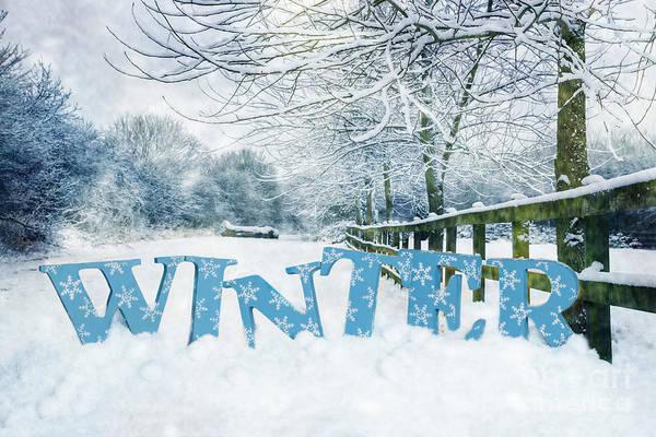 Snowflake Photograph - Winter Scene by Amanda Elwell