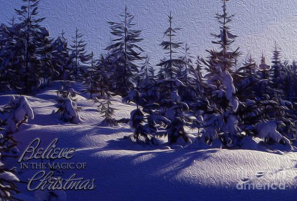 Photograph - Winter Scene by Randi Grace Nilsberg