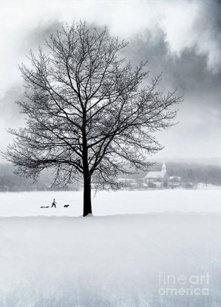 Photograph - Winter Scene With Tree And Village In Background by Sandra Cunningham