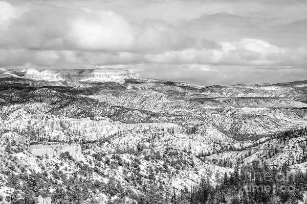 Wall Art - Photograph - Winter Scenery In Bryce Canyon Utah by Julia Hiebaum