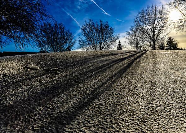 Wall Art - Photograph - Winter Shadows by Anna-Lee Cappaert