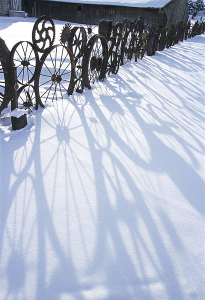 Wall Art - Photograph - Winter Shadows by Latah Trail Foundation