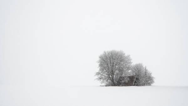 Wall Art - Photograph - Winter Silence by Tom Meier